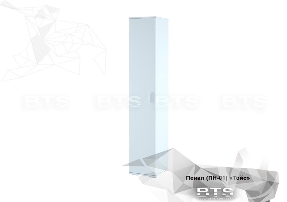 Пенал закрытый ПН-01 Тойс (белый/белый)