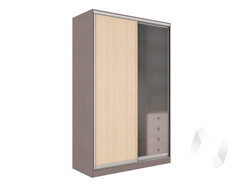 Шкаф-купе «Рене» 2-х дверный стекло матовое (ясень шимо темный/дуб сонома)