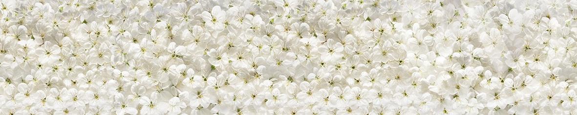 Панель декоративная АВС пластик 600*3000 Цветки вишни фф270