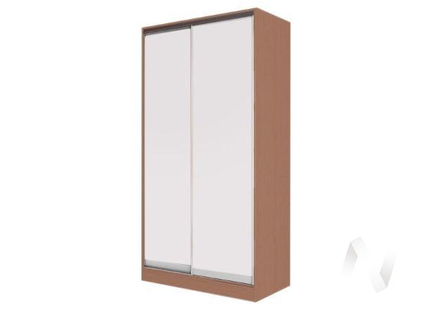 Шкаф-купе «Жаклин» 2-х дверный глухой (ясень шимо темный/белый)