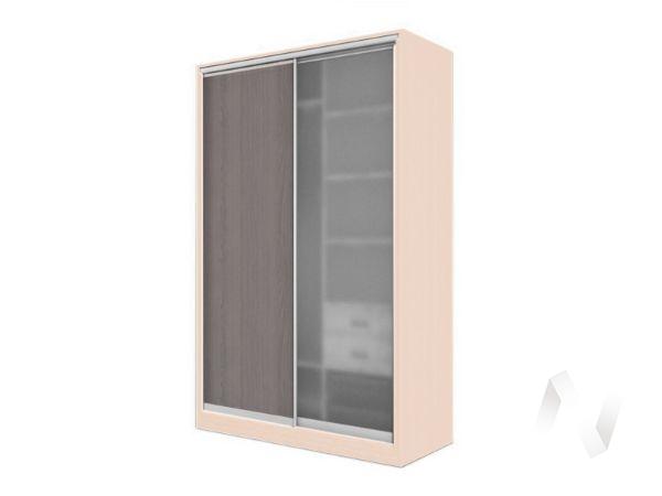 Шкаф-купе «Элвис» 2-х дверный стекло матовое (дуб сонома/ясень шимо темный)