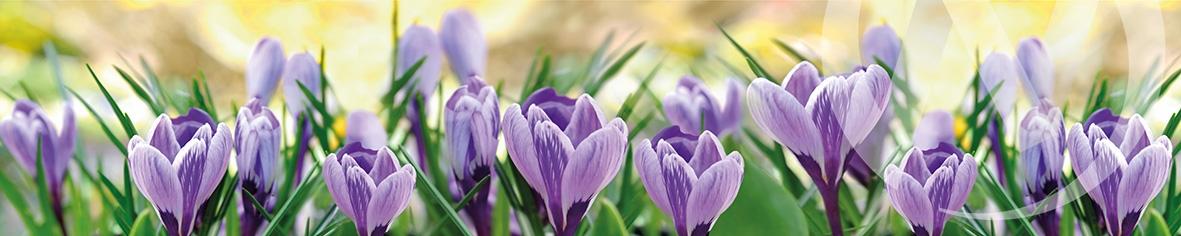 Панель декоративная АВС пластик 600*3000 Цветочки фиолетовые фф298
