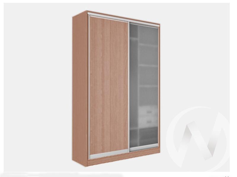 Шкаф-купе «Джонни» 2-х дверный стекло матовое (ясень шимо темный/ясень шимо темный)