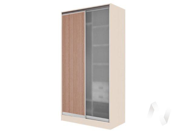 Шкаф-купе «Жаклин» 2-х дверный стекло матовое (дуб сонома/ясень шимо темный)