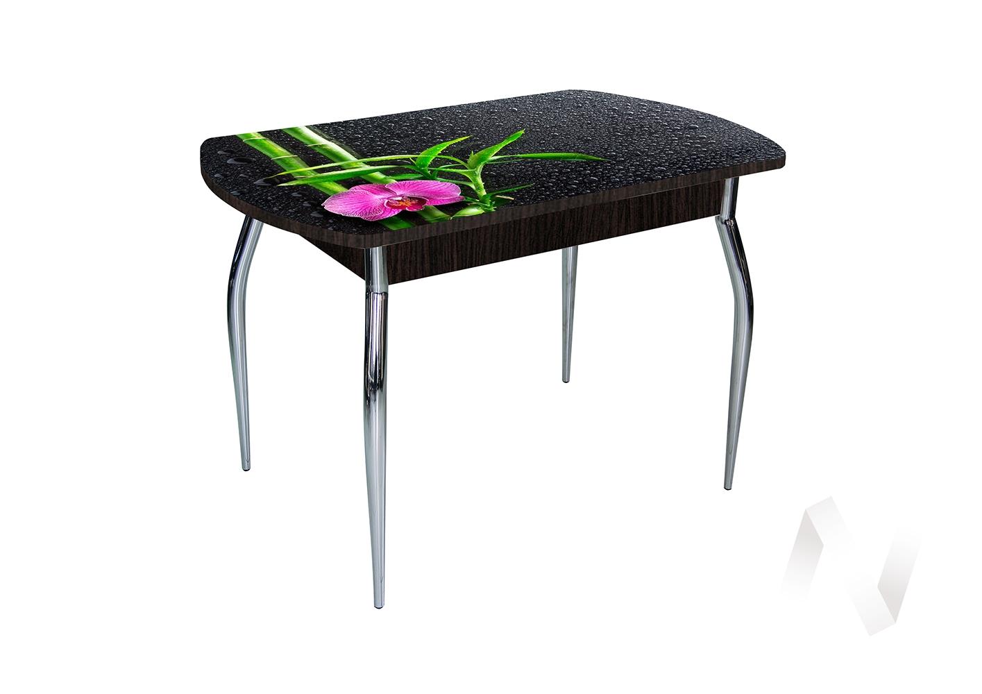 Стол раздвижной Asti-Foto1 (венге/стекло №34) недорого в Томске — интернет-магазин авторской мебели Экостиль