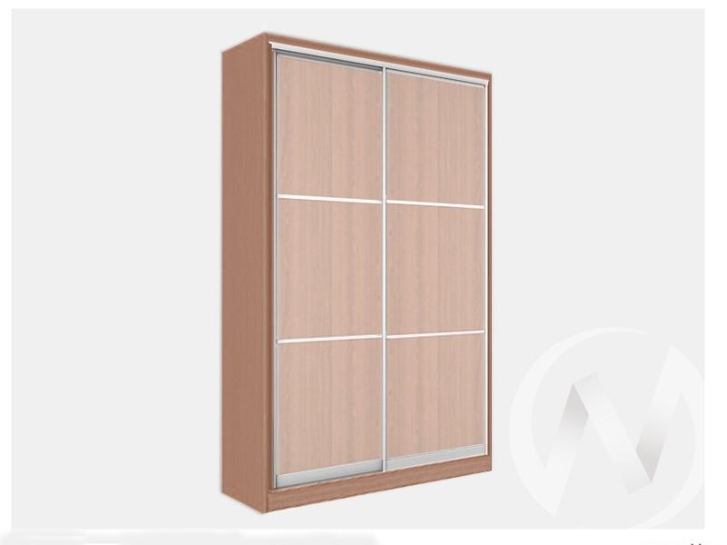 Шкаф-купе «Джонни» 2-х дверный фасад тройной ЛДСП (ясень шимо темный/дуб мл)