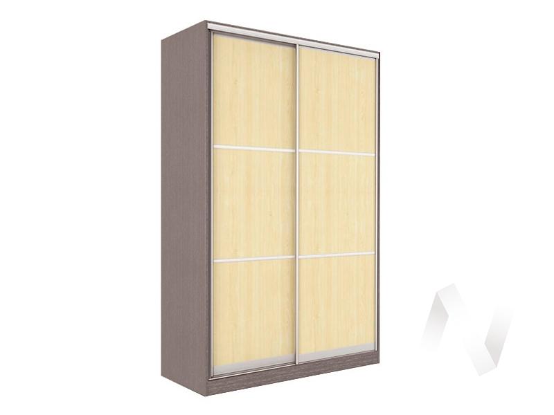 Шкаф-купе «Рене» 2-х дверный тройной ЛДСП (ясень шимо темный/дуб мл.)  в Томске — интернет магазин МИРА-мебель