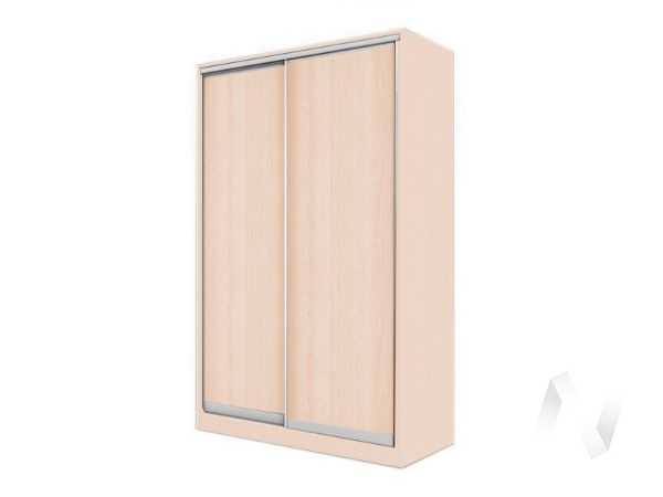 Шкаф-купе «Элвис» 2-х дверный (дуб сонома/дуб сонома)