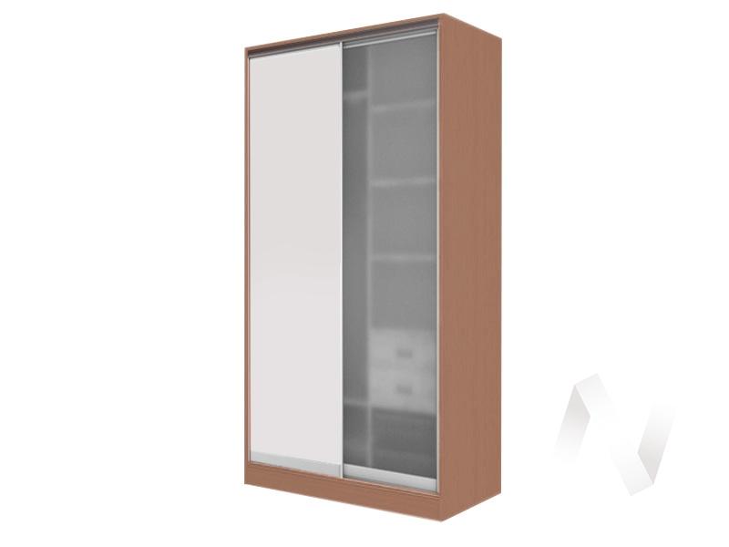 Шкаф-купе «Жаклин» 2-х дверный стекло матовое (ясень шимо темный/белый)  в Томске — интернет магазин МИРА-мебель